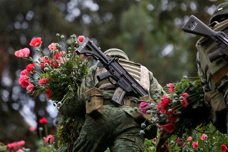 Soldados cortan amapolas de opio mientras destruyen un campo de plantación ilegal en la Sierra Madre del Sur, en Guerrero, 2018.REUTERS/Carlos Jasso