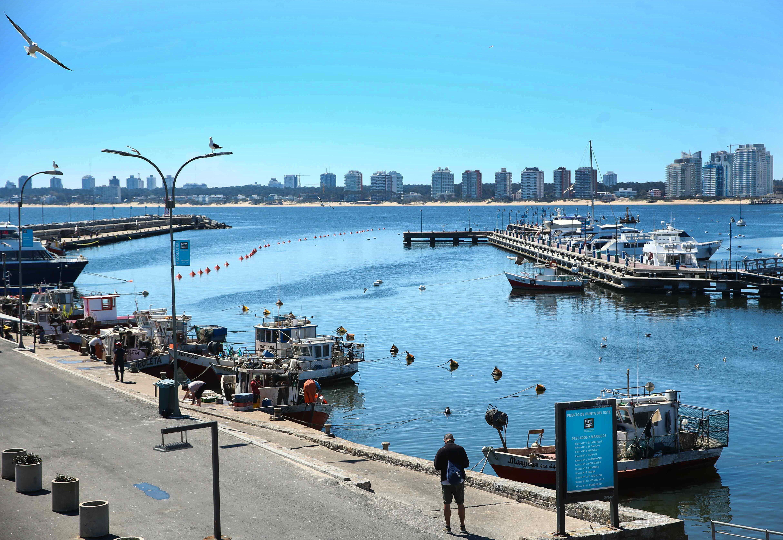 Vista del puerto de Punta del Este (Uruguay). A partir de noviembre los turistas argentinos vacunados podrán ingresar al país vecino. EFE/Federico Anfitti/Archivo