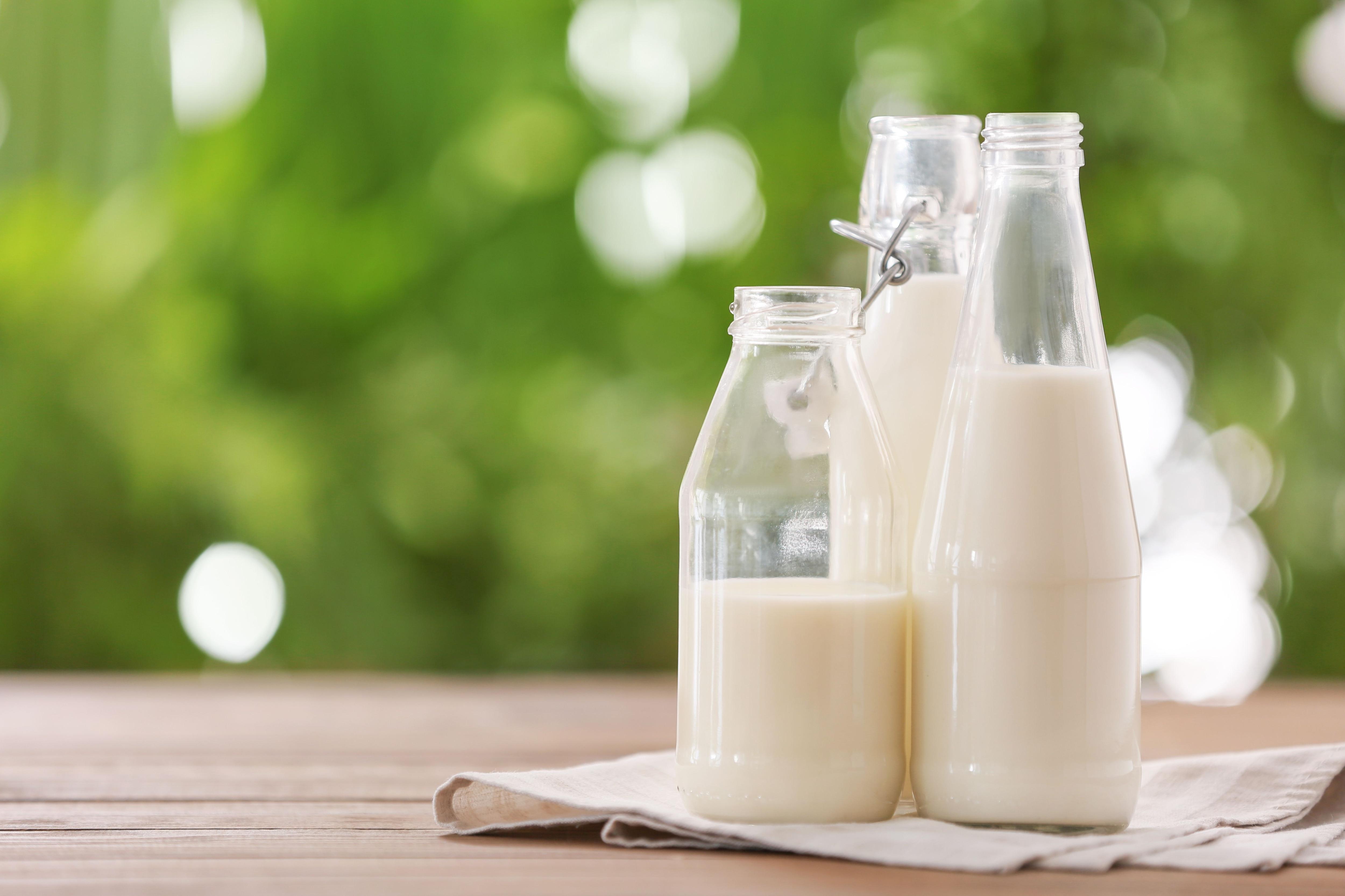 Romina Pereiro - Cómo incorporar lácteos en la alimentación de los niños #INFORME
