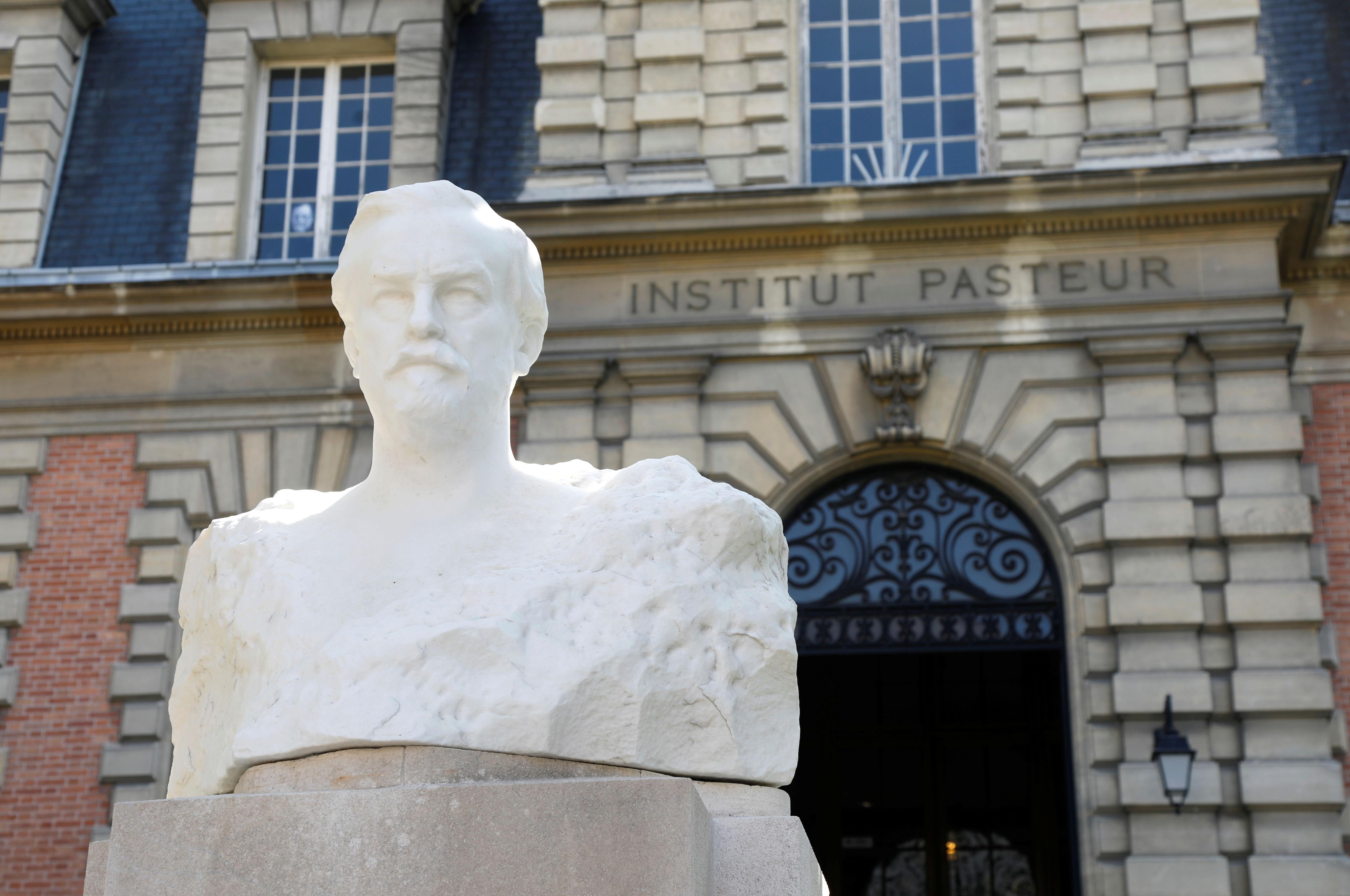 La investigación sobre los virus en murciélagos fue llevada a cabo por científicos del Instituto Pasteur de Francia con colegas de Laos (REUTERS/Charles Platiau/Archivo)